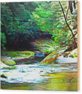 French Broad River Filtered Wood Print