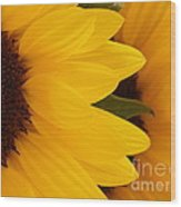 French Sunflowers Wood Print