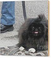 Frenchman And His Dog Wood Print