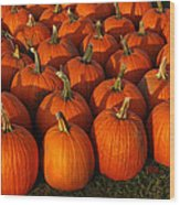 Fresh From The Farm Orange Pumpkins Wood Print