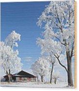 Fresh Frost Wood Print
