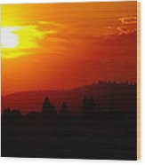 Fresh Reality Of Daybreak Wood Print