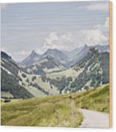 Fribourg Alps Wood Print