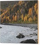 Friday Creek Wood Print
