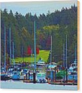 Friday Harbor Docks Wood Print