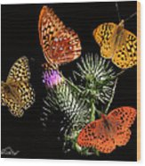 Four Fritillaries Wood Print