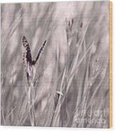 Fritillary Fields Wood Print