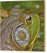 Frog Eye Wood Print