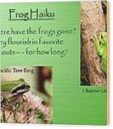 Frog Haiku Wood Print by Laurel Talabere