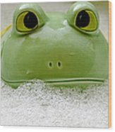 Frog In The Bath  Wood Print