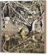 Frog King Wood Print