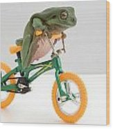 Frog On A Bicycle Wood Print