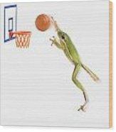 Frog Playing Basketball Wood Print