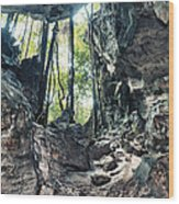 From The Cave Wood Print