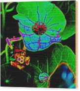From The Psychedelic Garden Wood Print