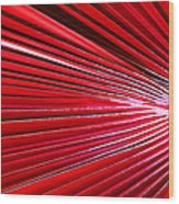 Frond Of Red Wood Print