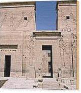 Front Of Philae Wall Wood Print