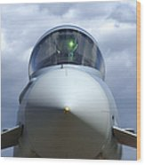 Front View Of A Eurofighter Typhoon Wood Print