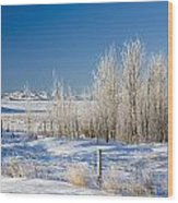 Frost-covered Trees In Snowy Field Wood Print