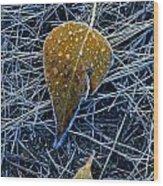Frost On An Aspen Leaf Wood Print