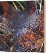 Frosted Fall Wood Print