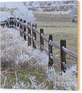 Frosted Fence Wood Print
