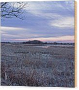 Frosty Cape May Meadow Wood Print