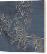 Frosty Weeds Wood Print