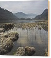 Frosty Winters Morning, Lower Lake Wood Print