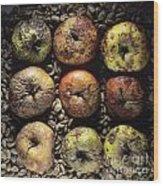 Frozen Apples Wood Print by Bernard Jaubert