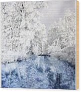 Frozen Beauty Wood Print