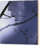 Frozen But Still Wet Wood Print