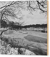 Frozen Central Park At Dusk Wood Print by John Farnan