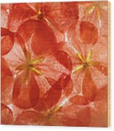 Frozen Flora 6 Wood Print