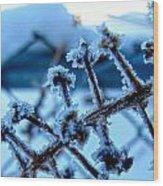 Frozen II Wood Print