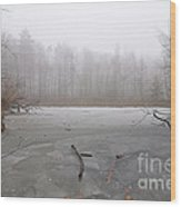 Frozen Lake In Winter Wood Print