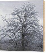 Frozen Landscape 4 Wood Print