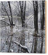 Frozen Landscape 5 Wood Print