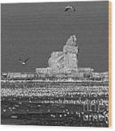 Frozen Lighthouse B W Wood Print