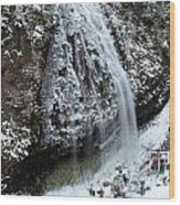 Frozen Narada Falls Wood Print