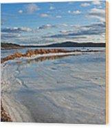 Frozen Shoreline Wood Print