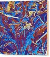 Fructose Wood Print
