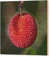 Fruit Of Strawberry Tree Wood Print