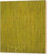 Fruiting Moss Wood Print