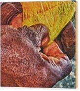Fruity Mango Wood Print by Daniel Marcion