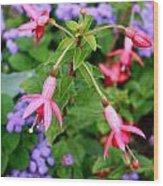 Fuchsia Standout Wood Print