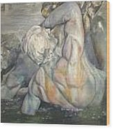 Fuente Girondins Wood Print