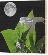 Full Moon Flower Wood Print