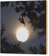 Full Moon Late Night Spain  Wood Print