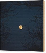 Full Moon On A Winter's Night Wood Print